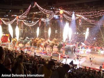El gran Ringling Bros. Circus anuncia su cierre tras 146 años