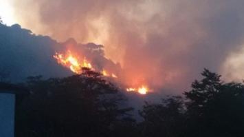 Controlan los incendios forestales en San Luis