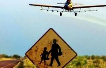 La Justicia prohibió las fumigaciones con agrotóxicos alrededor de una escuela rural