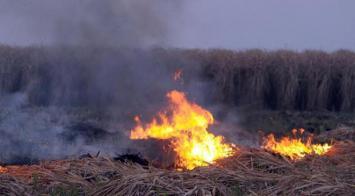 Defensa Civil advierte que el riesgo de incendios es muy alto