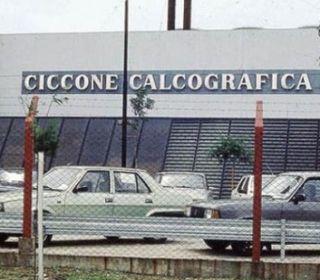 El fiscal avaló la declaración del dueño de la ex Ciccone