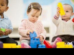 La estructura de la materia blanca predice la función cognitiva en niños de uno y dos años