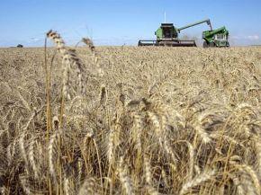 Eliminan la ley de abastecimiento impuesta por Guillermo Moreno para el trigo
