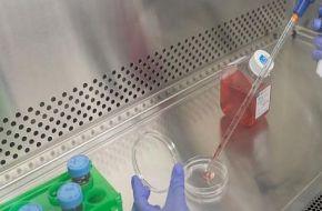 Terapias regenerativas, aliadas para la juventud de la piel