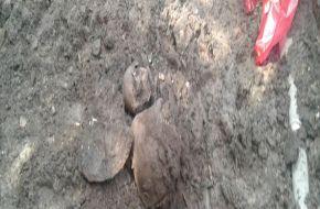 Encontraron restos óseos en pleno centro de la ciudad de Tafí Viejo