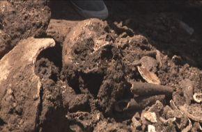 Hallazgo de restos pre históricos en Tafí Viejo