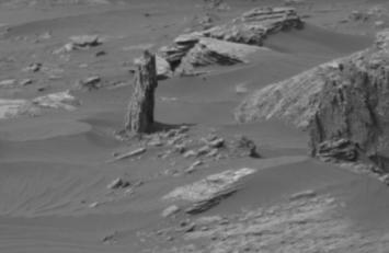 ¿Creció un árbol en Marte? Un entusiasta halla un 'tronco' en el planeta rojo
