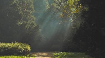 Chile contará con una nueva red de parques nacionales gracias a la donación de Tompkins