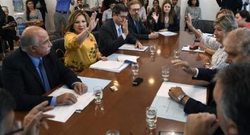 Senado: el oficialismo se quedó con comisión clave para debatir el aborto