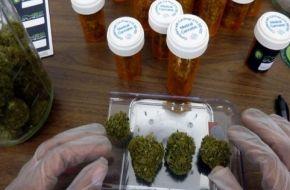Promulgan ley que habilita el uso medicinal del cannabis
