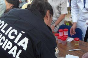Cuáles fueron los resultados de los primeros análisis toxicológicos en las fuerzas de seguridad federales