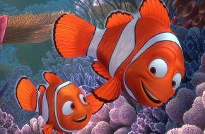 """La tierna clave científica detrás de """"Buscando a Nemo"""""""
