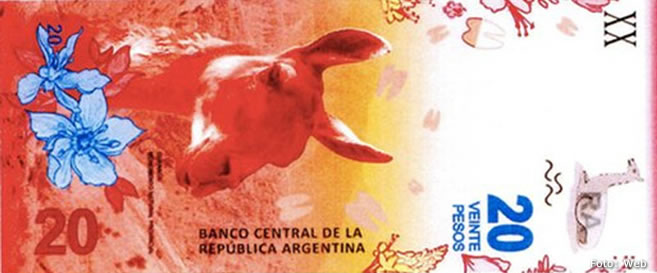 El nuevo billete de $20 tendrá un guanaco y será el de menor denominación