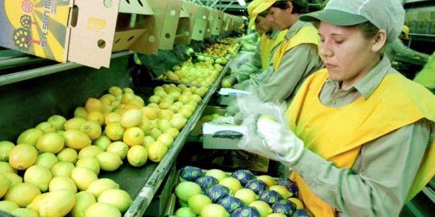 Argentina intentará reactivar las exportaciones de biodiesel y limones a Estados Unidos