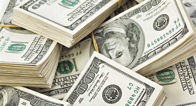 El Gobierno tuvo que intervenir para frenar una corrida del dólar