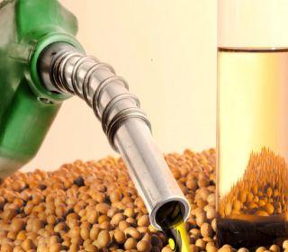 EEUU confirmó suba de aranceles para el biodiésel argentino y el Gobierno evalúa llevar el caso a la OMC
