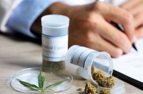 El Senado aprobó la ley sobre el uso del cannabis medicinal