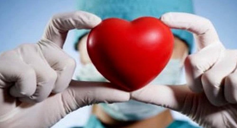 La donación de órganos creció más de un 15%